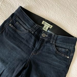 Democracy Ab-solution Skinny Jean